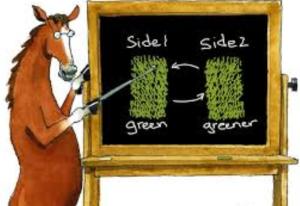 Grass look s greener